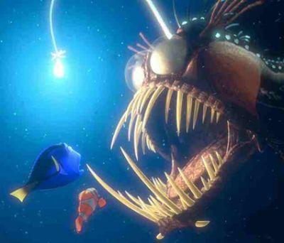 Finding Nemo angler fish