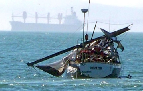 Boat damaged by whale in Table Bay