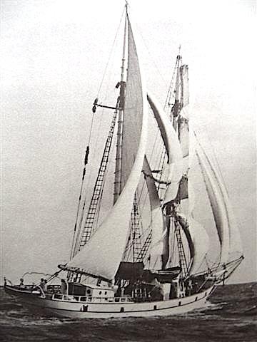 Brigantine Albatros