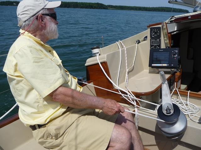 Sailing Petrel