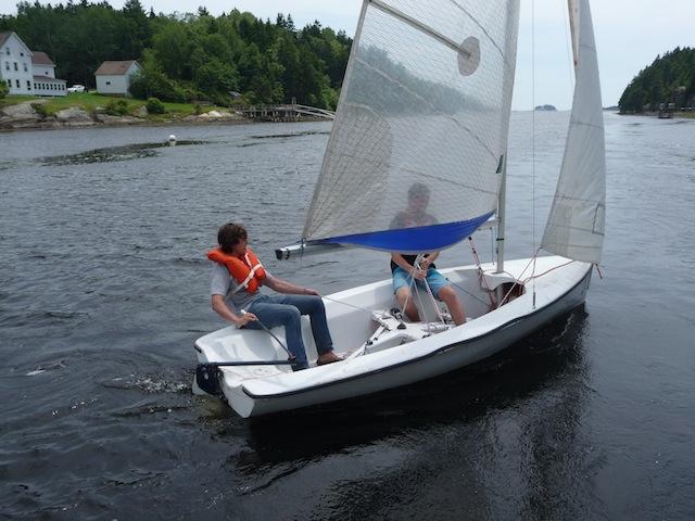 Lark sailing