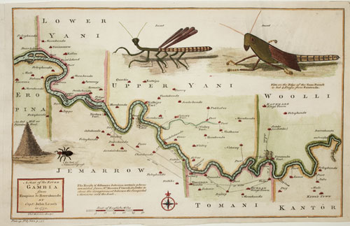 Gambia insect map