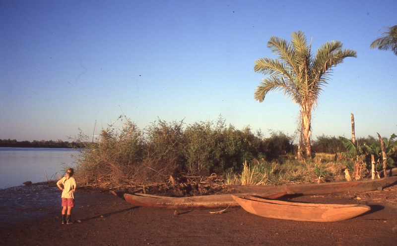 Pirogues on the Gambia