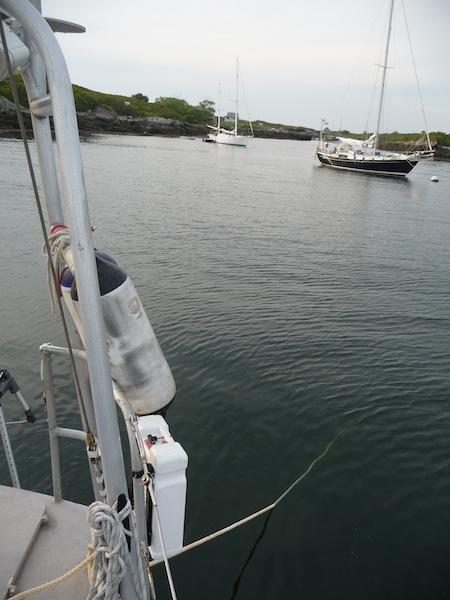 Lunacy stern anchor