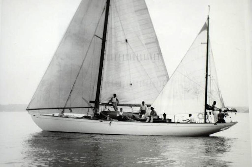 Dorade sailing