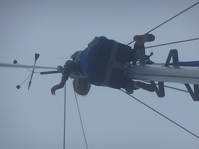 Lucy up mast in fog