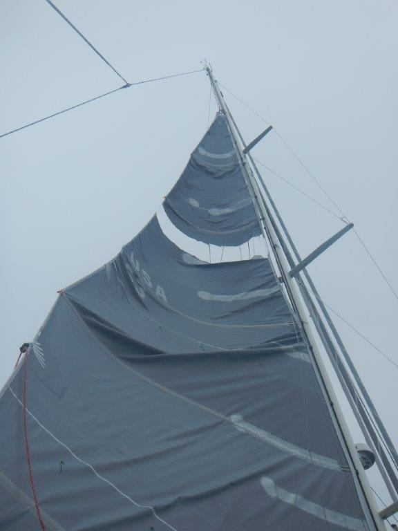 Torn mainsail aloft