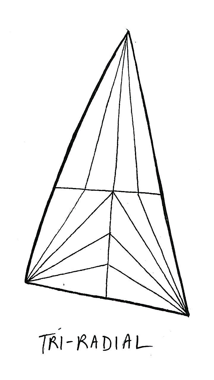 Triradial