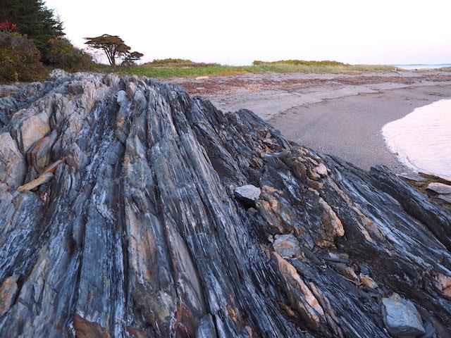 Jewell shore