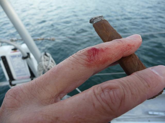 Boat bites