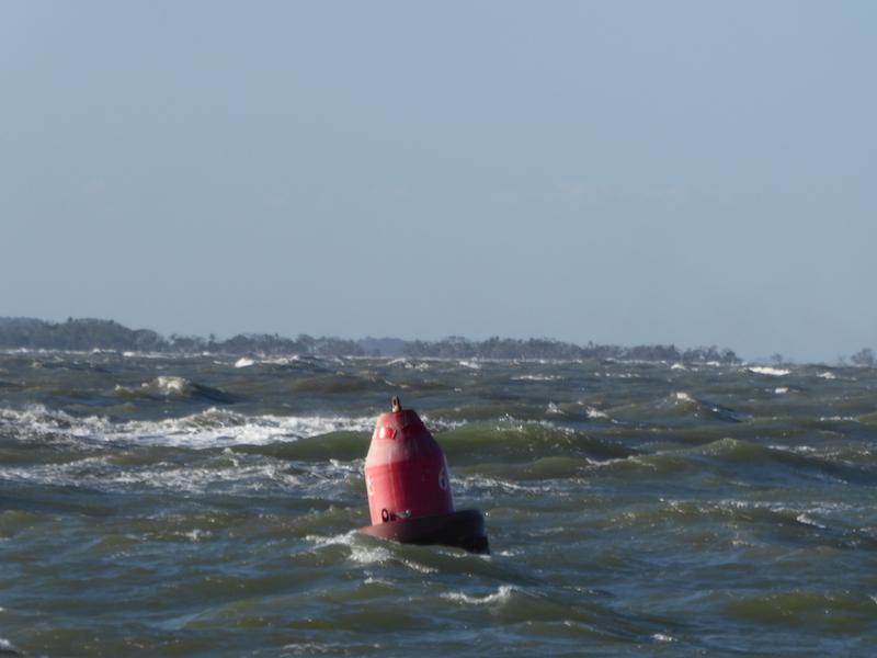 Buoy 6