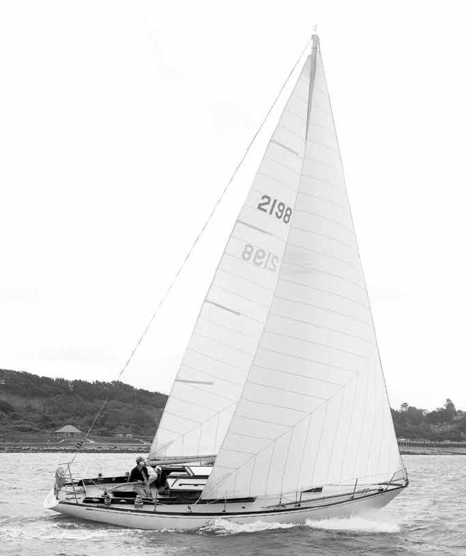 Rabbit sailing
